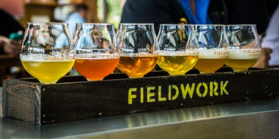 Fieldwork Brewing Flight